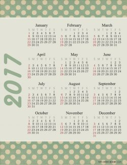 2017 calendar at a glance