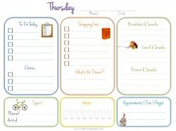 shopping list and food journal